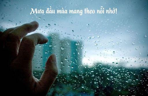 Tổng hợp những stt về mưa hợp tâm trạng hay nhất nhận bão like