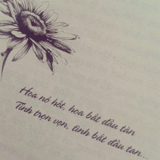 [Tuyển tập] những câu nói hay về tình yêu tan vỡ đau đến nhói lòng