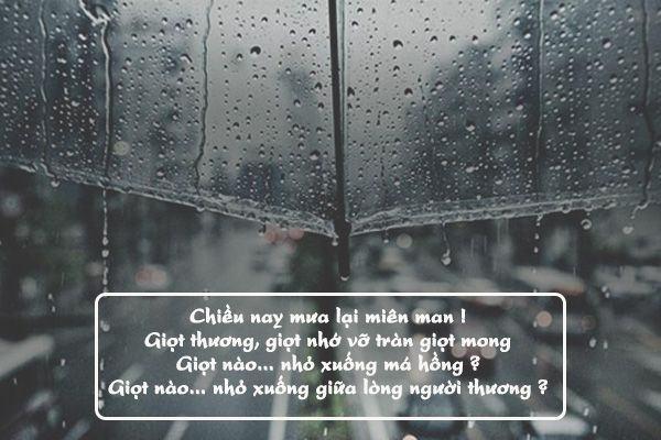 Tuyển tập thơ về mưa ngọt ngào và lãng mạn hay nhất