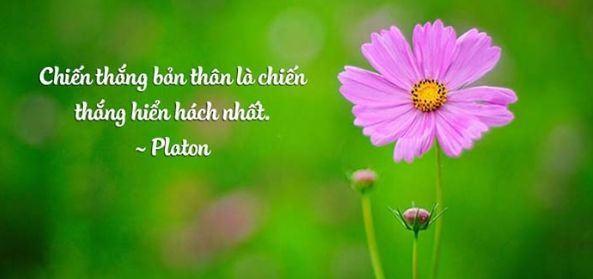 Những câu châm ngôn sống chất bạn nên đọc một lần trong đời