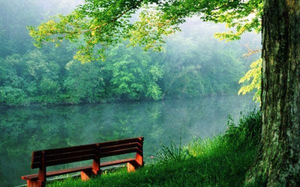 999+ hình nền thiên nhiên tuyệt đẹp - kĩ xảo hơn tranh vẽ