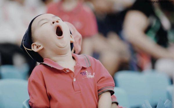 """999+ hình ảnh hài hước duy nhất khiến bạn phát """"khóc thét"""""""