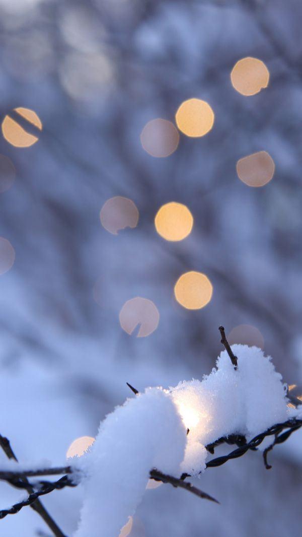 1011+ Hình Nền Giáng Sinh An Lành Ấm Áp, Tuyệt Vời Nhất